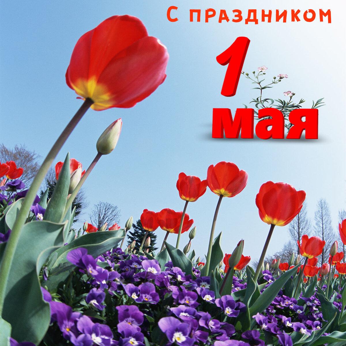 Картинки с предпраздничным днем 1 мая