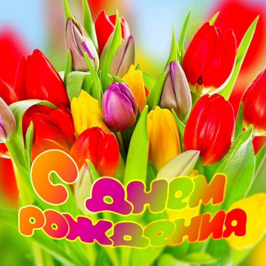 Открытки ко дню рождения-тюльпаны, открытку деньгами