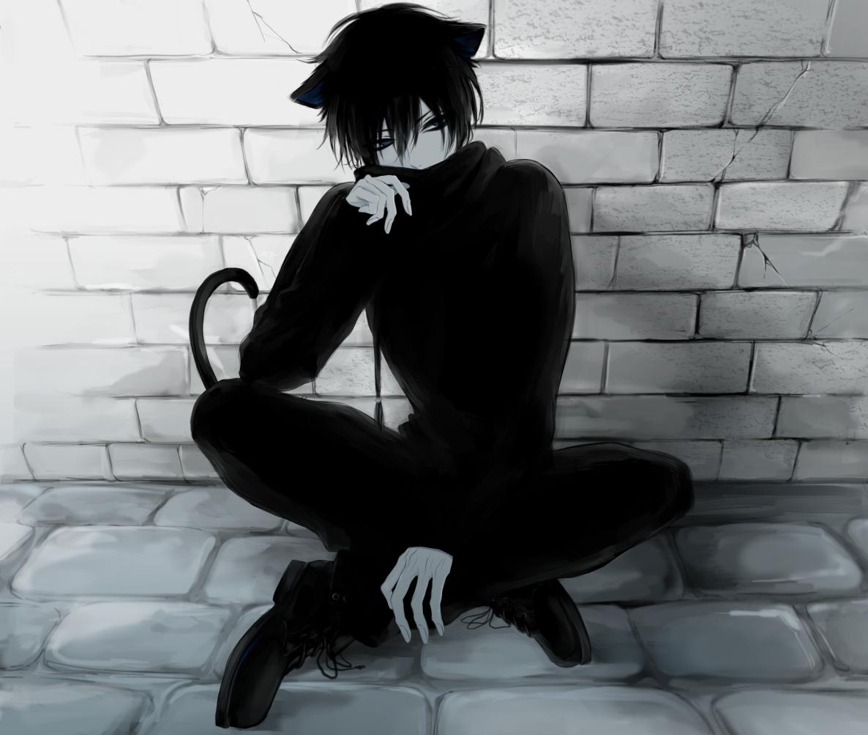 Картинки парень кот