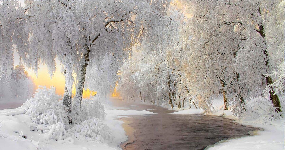 Картинки красивые со снегом показать, клиентам хочу собаку