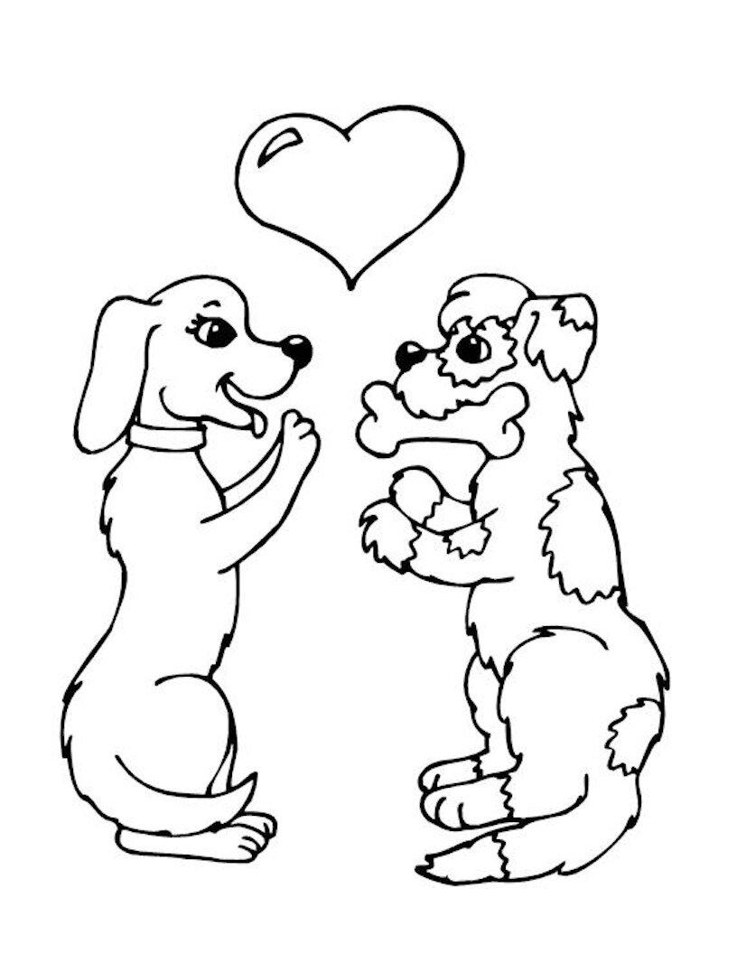 Картинка кошек и собак нарисованные, для детей