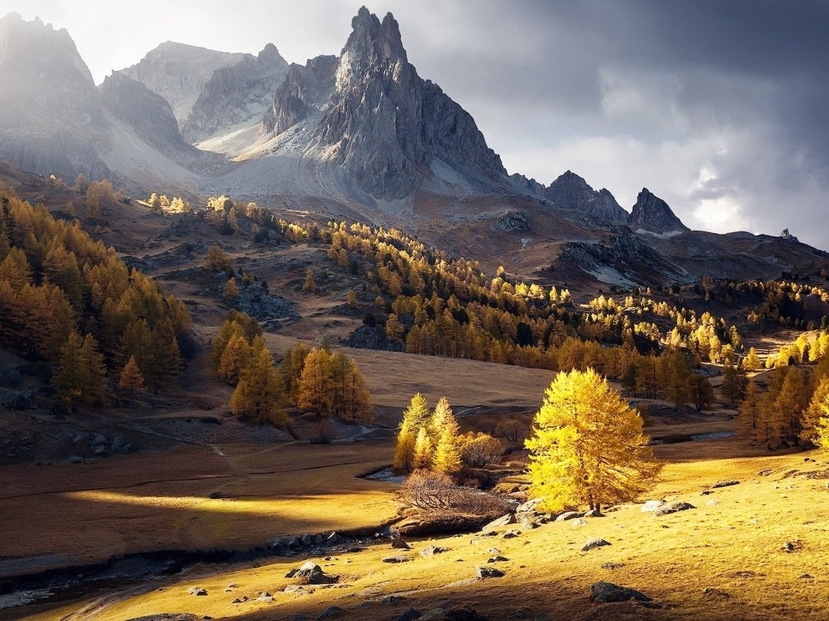лося фото картинки природа в горах осень миксер несколько
