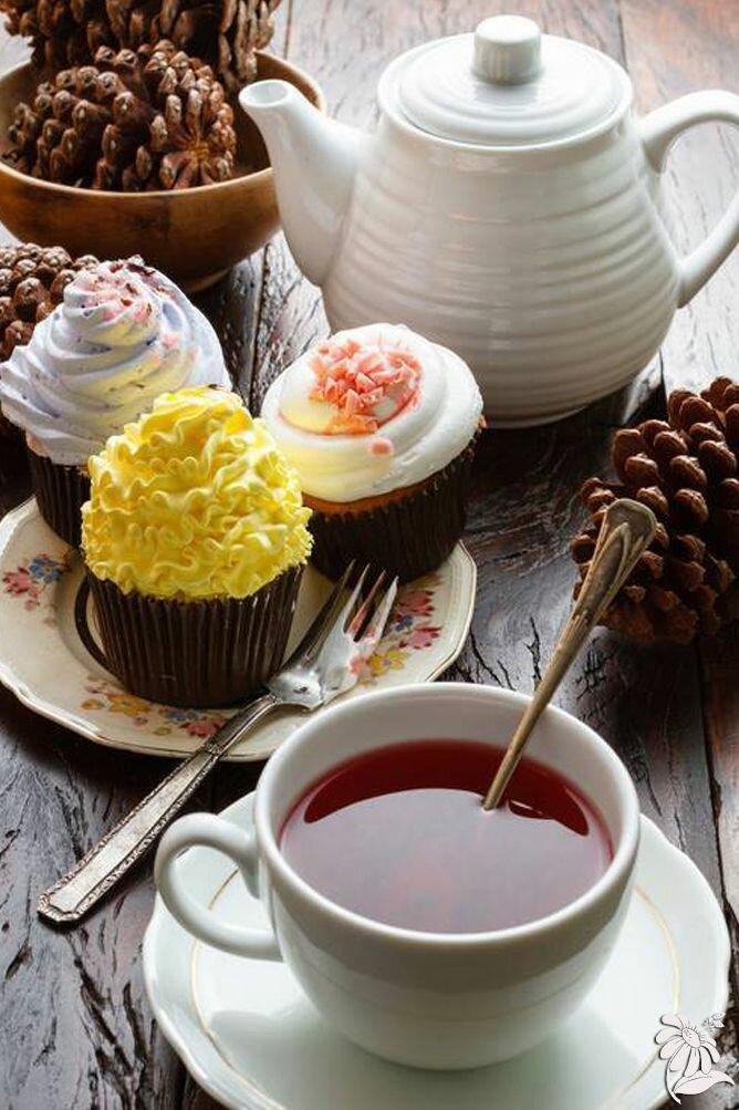 фестивали, открытки с чаем и сладостями комплекс расположен рядом