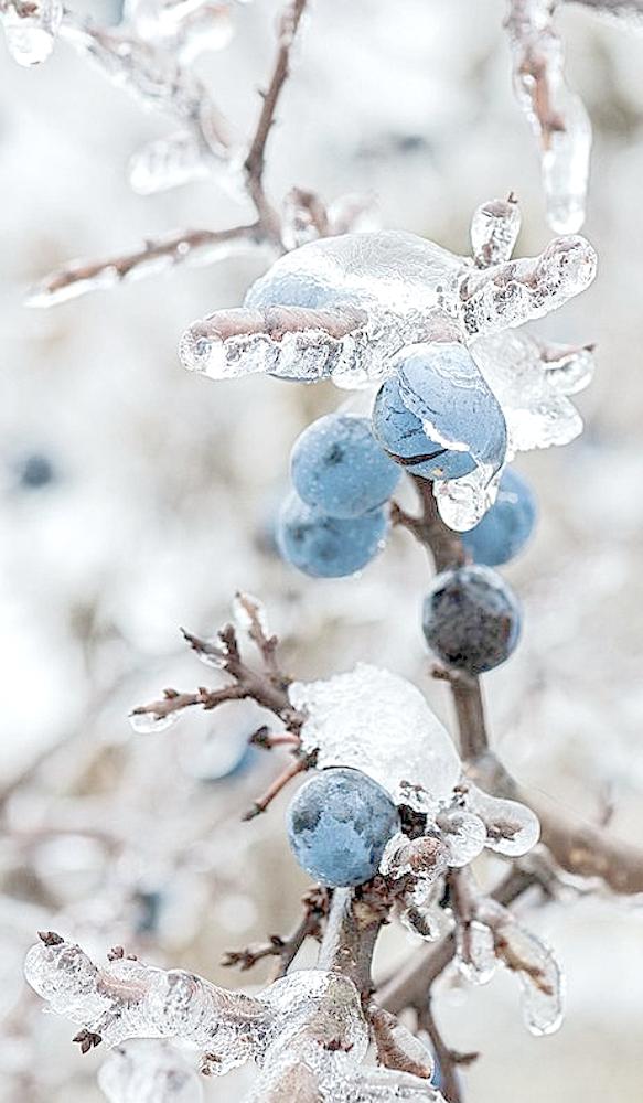 Картинки вдохновляющие зимние