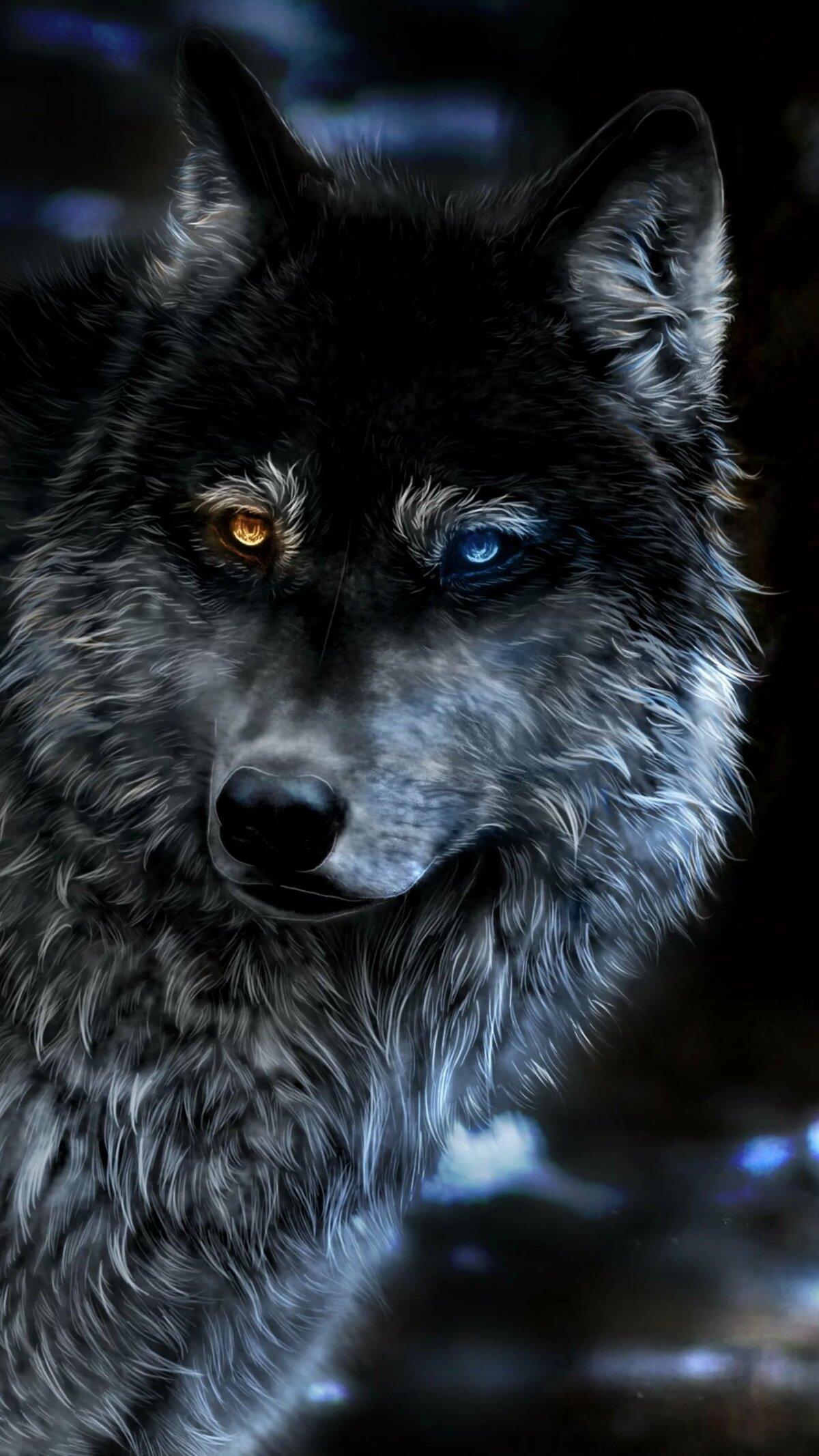 Самые крутые волки картинки