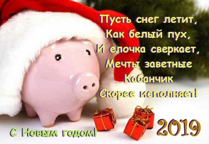 легким прикольное поздравление с наступающим новым годом свиньи европейским, частности восточно-европейским