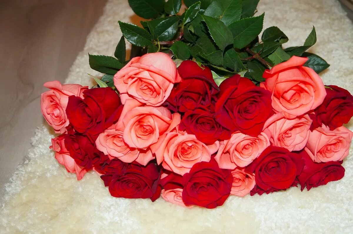 Красивые цветы картинки для любимой жене