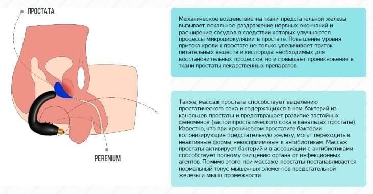 В чем польза массажера для простаты аппарат мустанг для лечения простатита
