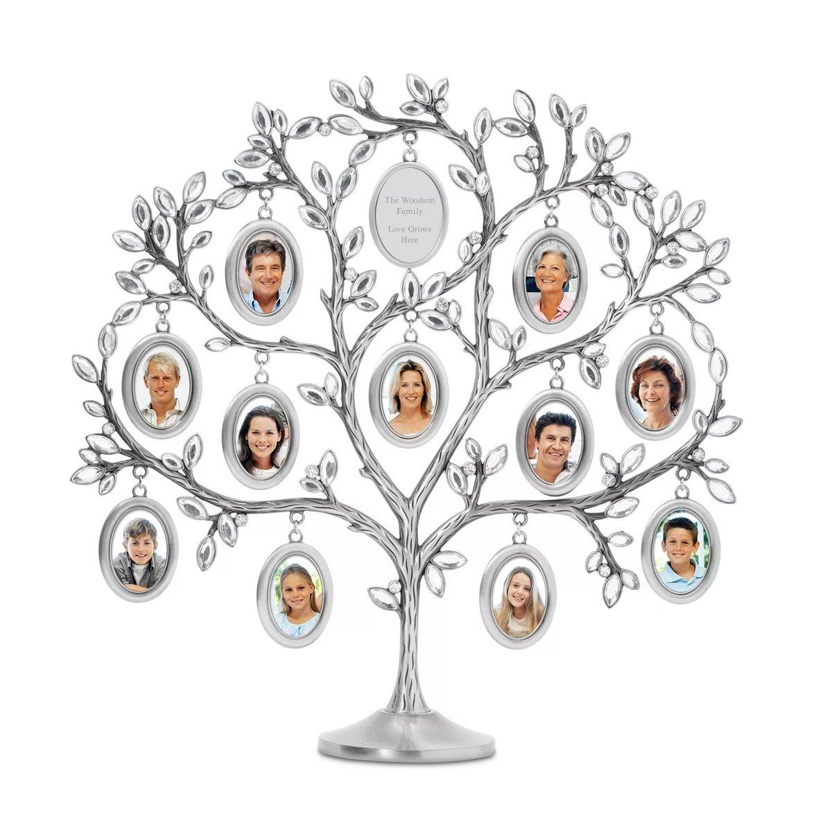 картинки семейное древо красивые