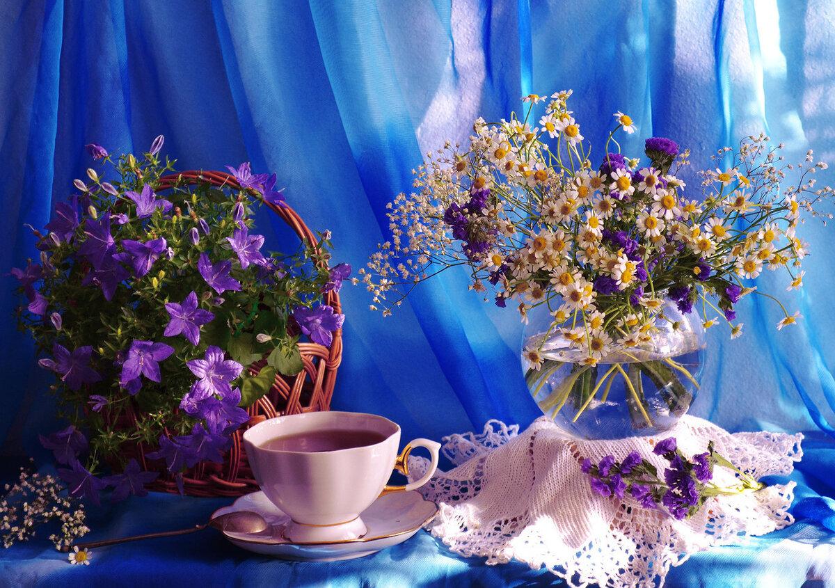 Картинки доброе утро хорошего вечера
