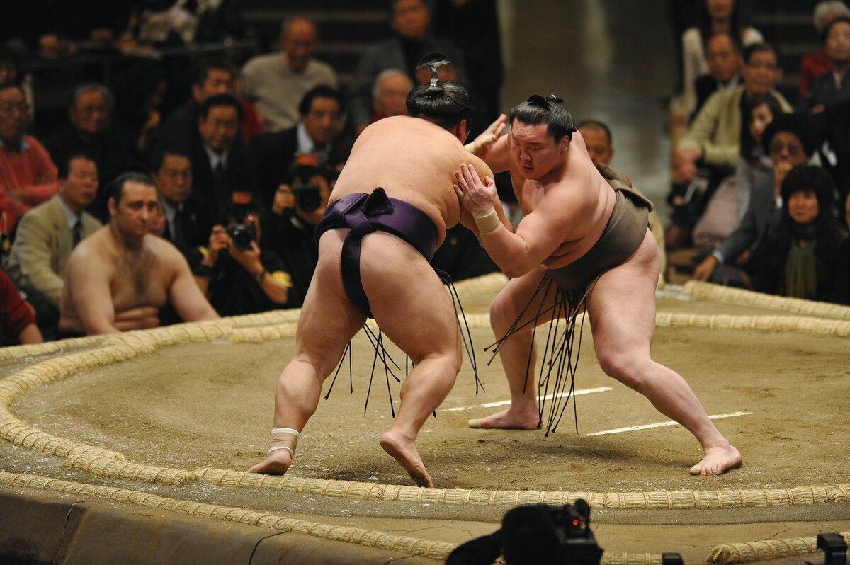 Сумоисты японии фото