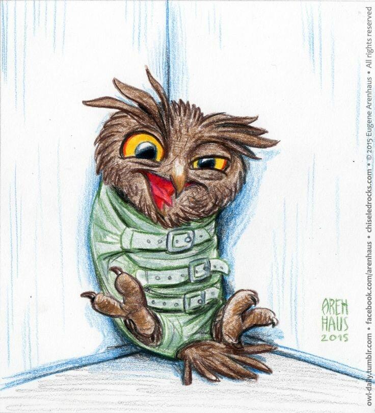 Картинка чокнутой совы