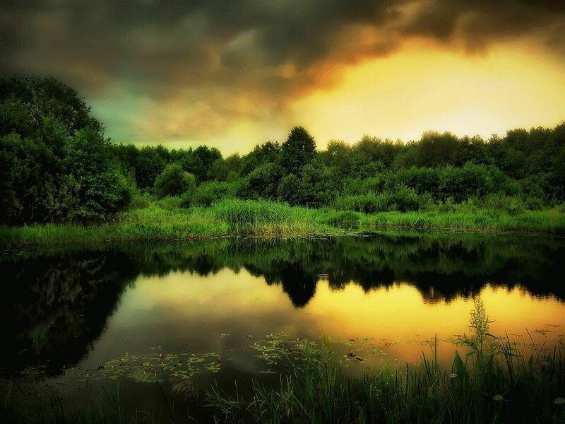 Картинки, открытки природа беларуси