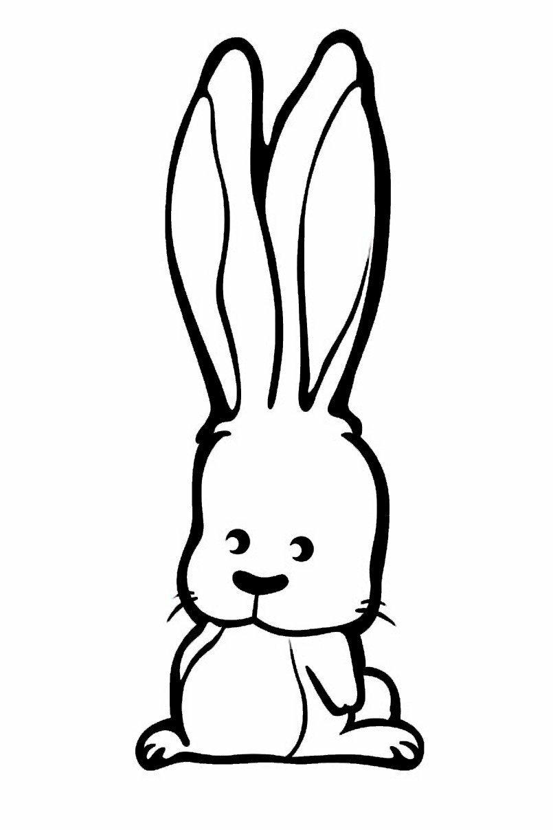 Картинки про зайца для срисовки