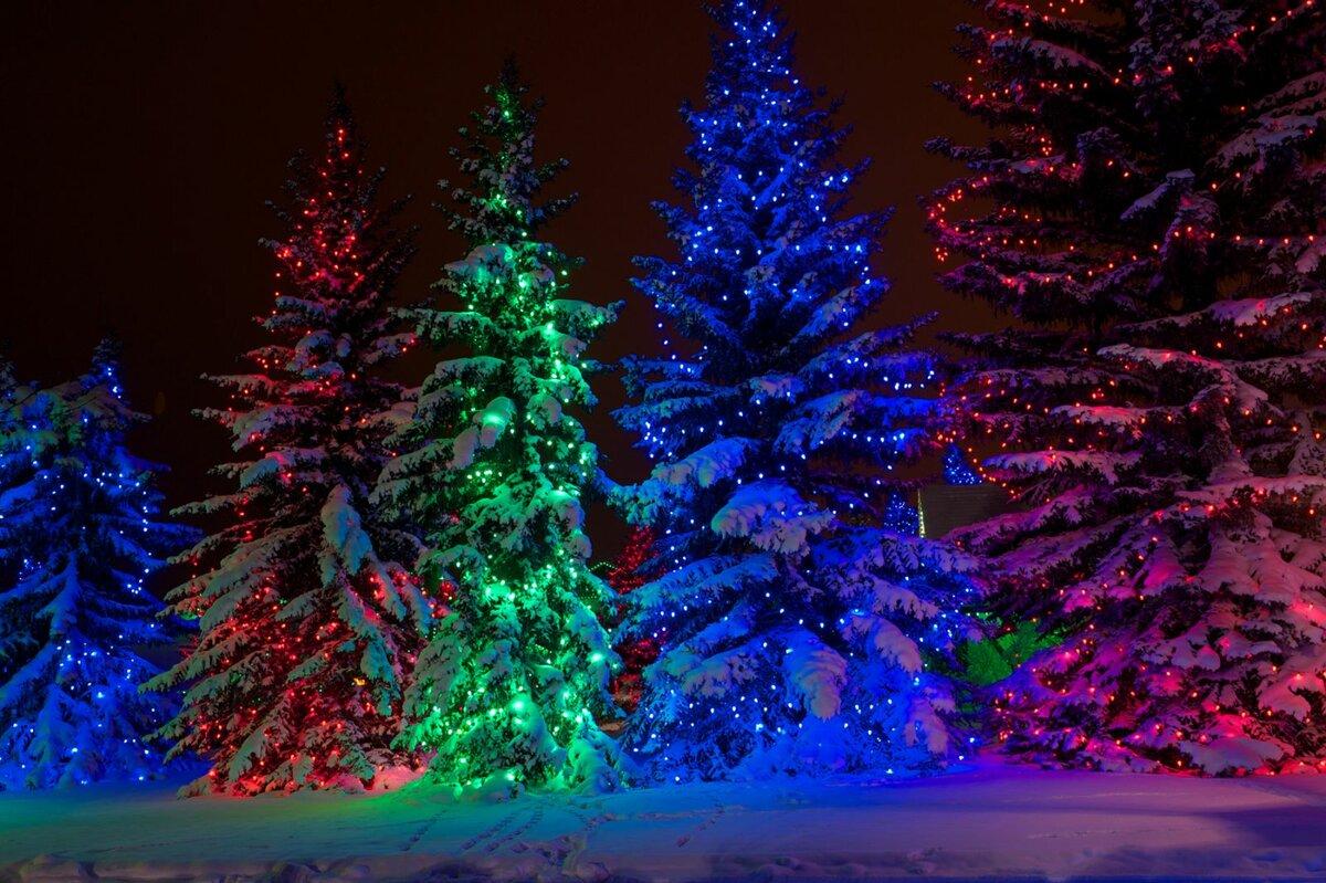 Новогодние картинки про елок