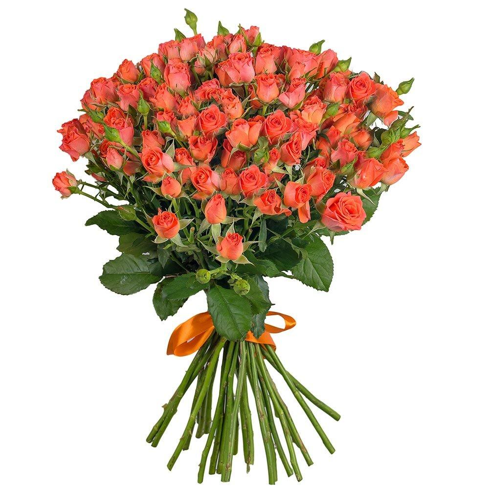 сами, букеты из кустовой розы картинки этого произвольной форме