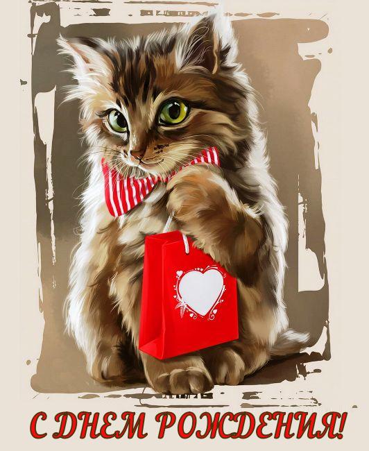 День рождения кот открытка