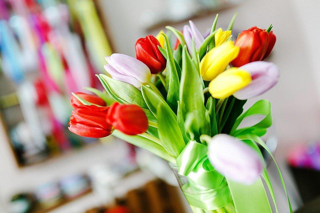 Новым, картинки тюльпанов на 8 марта