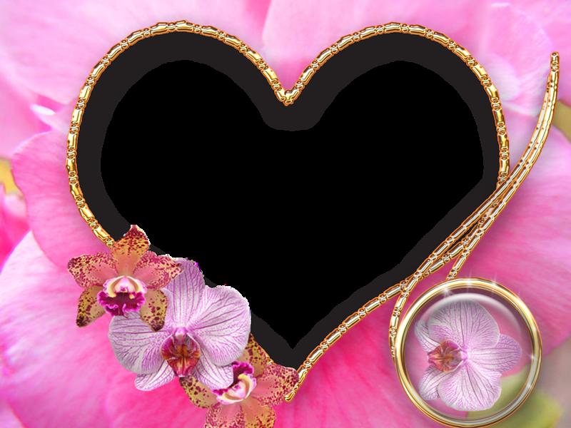 Приколы, фотошоп онлайн с днем свадьбы открытки