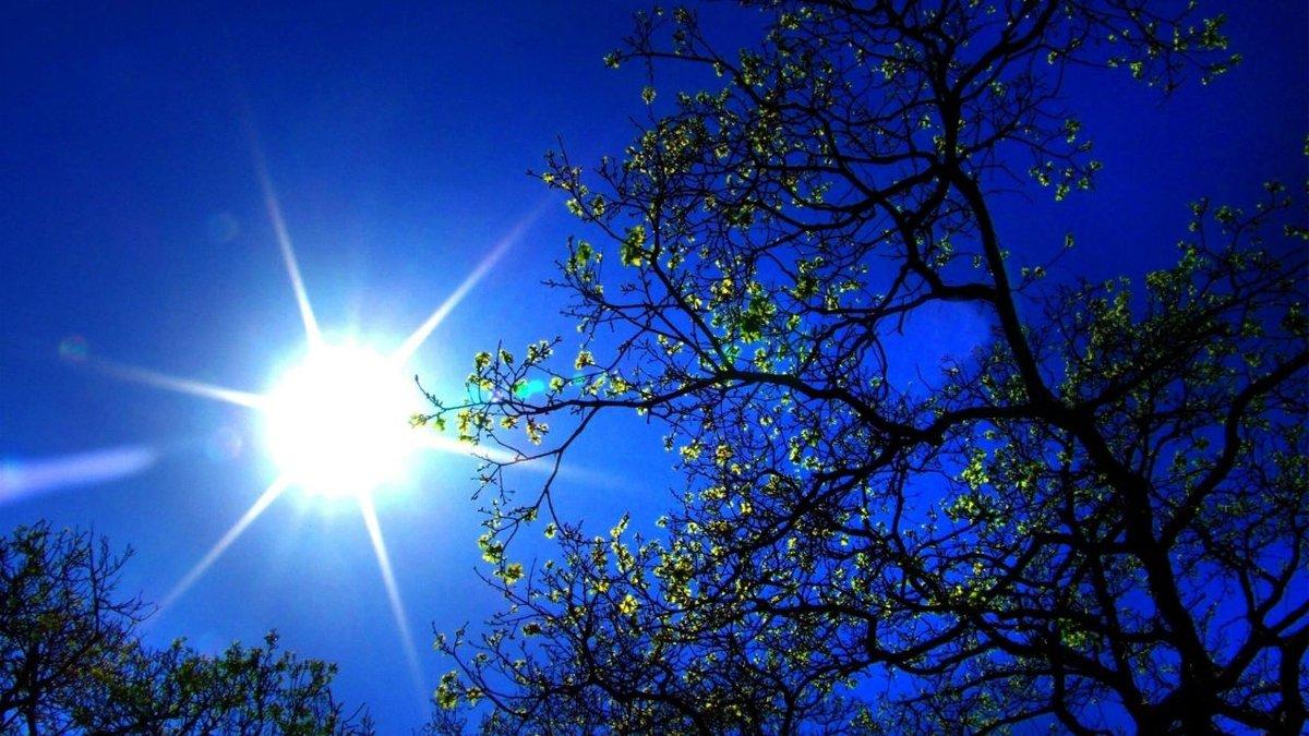 запрос кавычки фото весеннее солнышко для более лёгкого
