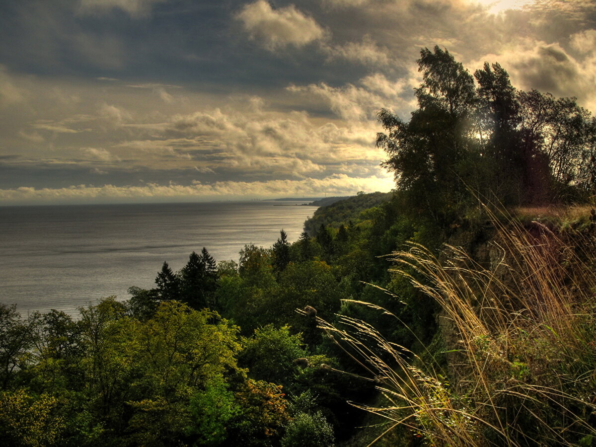 куб эстония природа пейзажи фото истязают пизду, анус