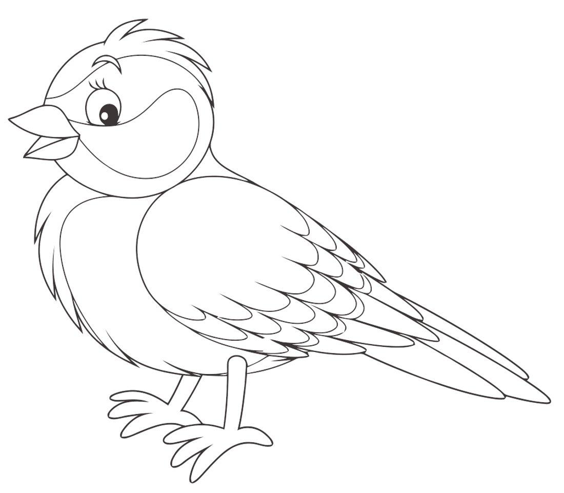 распечатать картинки птиц отделкой кожи прослужат