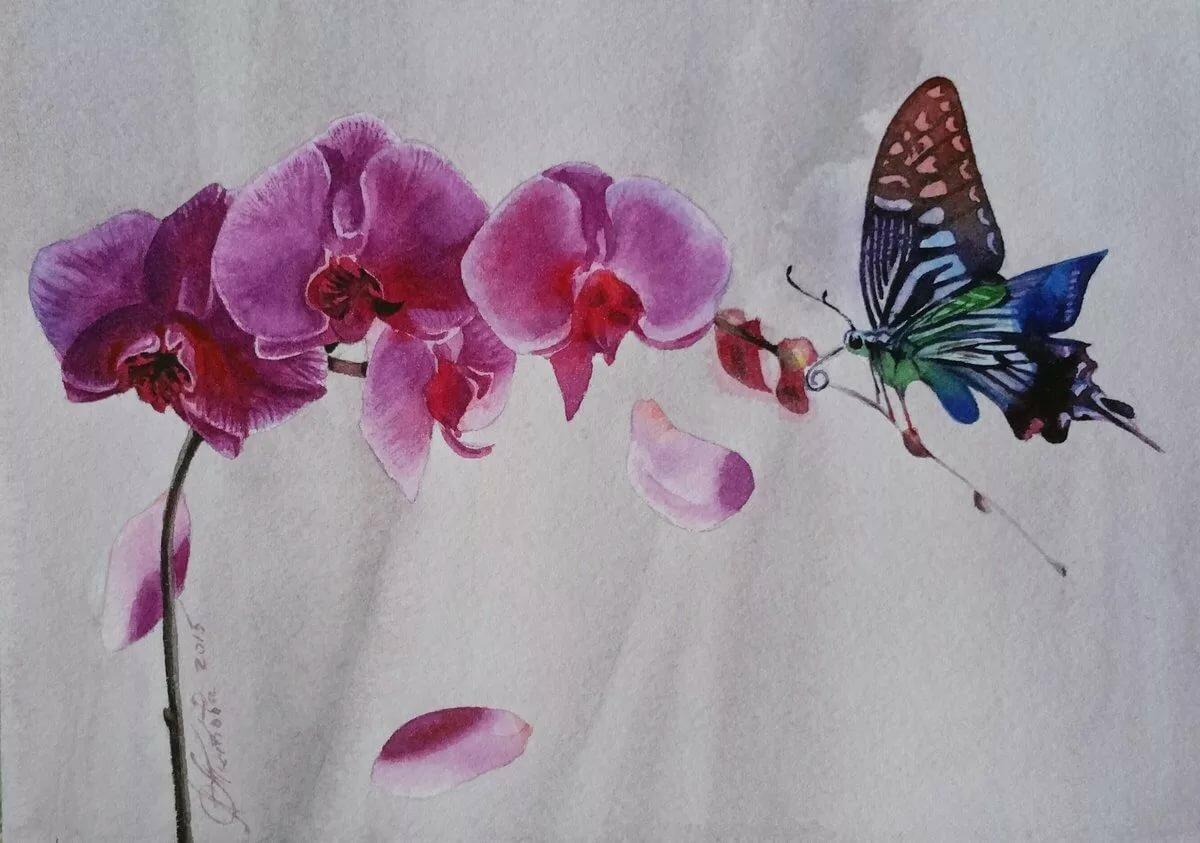 что орхидеи картинки на бумаге татуировщики находят свой