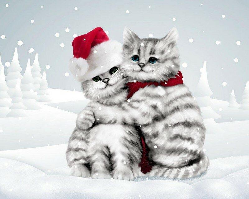 Белой собакой, хорошего настроения открытка с котом