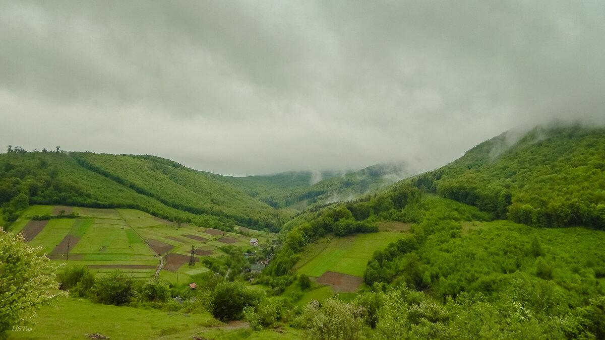 В горах дожди...