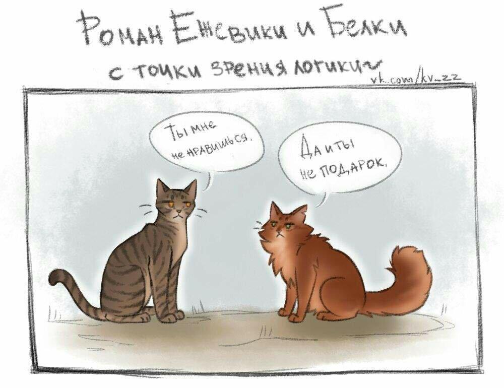 Смешные картинки про котов воителей с надписями, открытка
