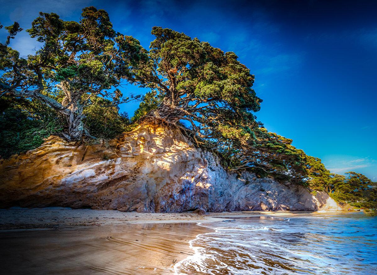 Картинка природа с морем