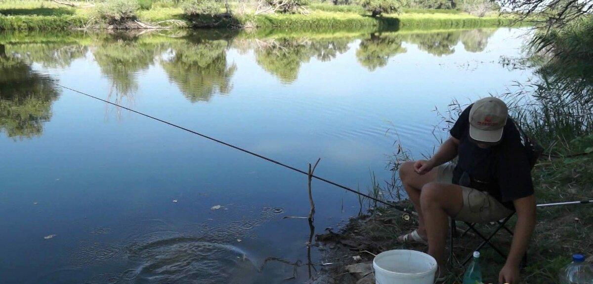 Ловля плотвы летом на удочку