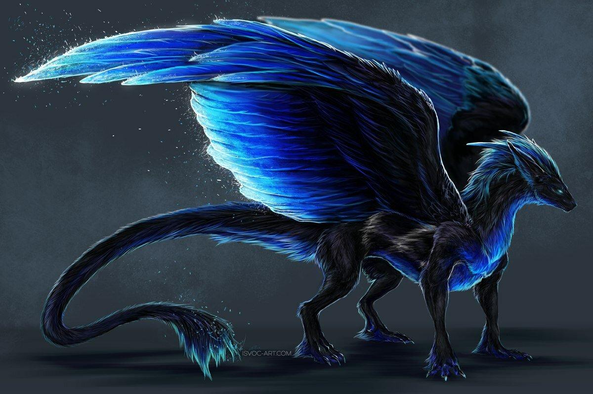 Животное картинки драконы