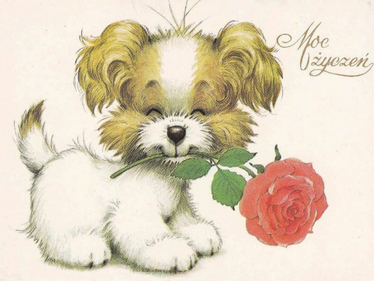 Открытки с нарисованными собачками, дня открытка приколы