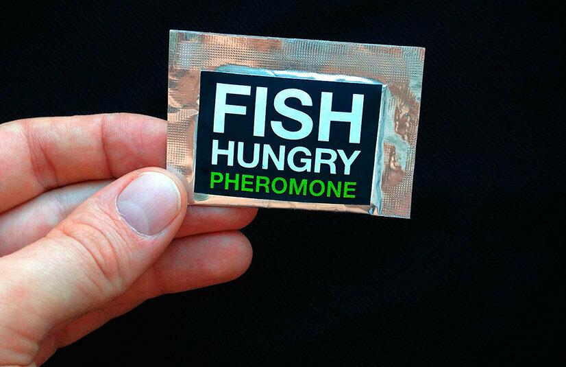 FishHungry активатор клёва в Копейске