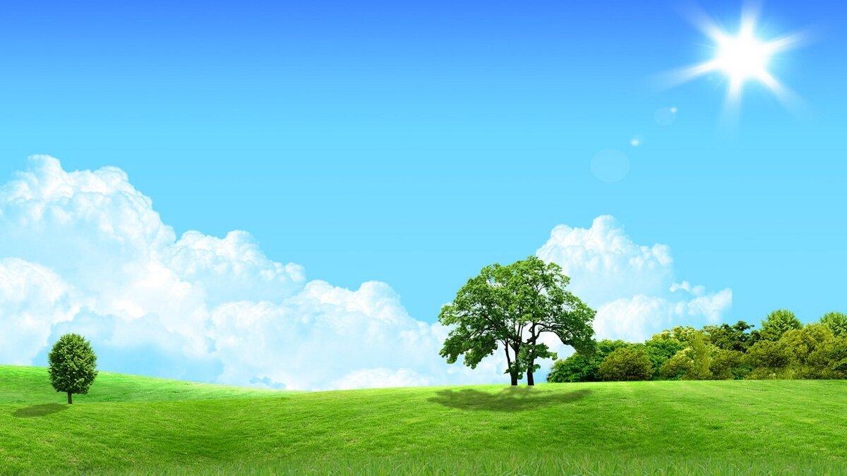 рисунок с солнцем и деревьями этого салата берём