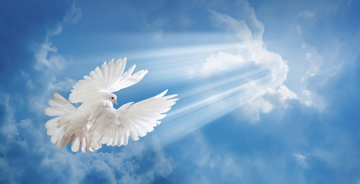 Днем ангела, картинка с небом и голубями