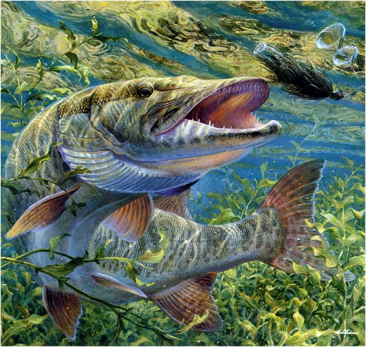 Фото рыбалка на поплавок если живем