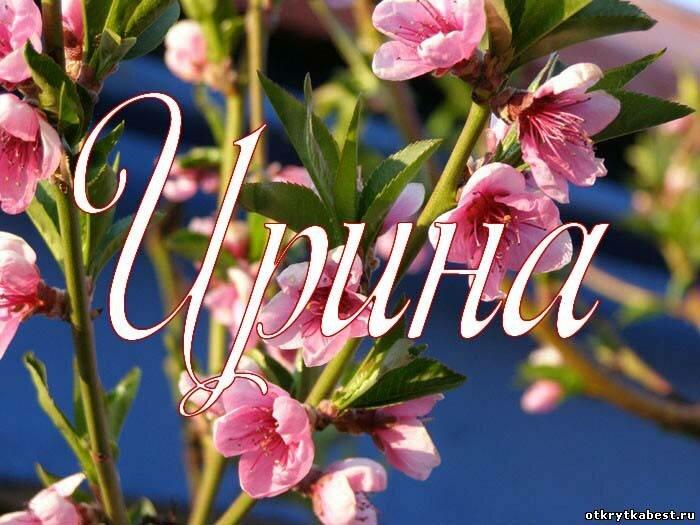 Цветы картинки ирине