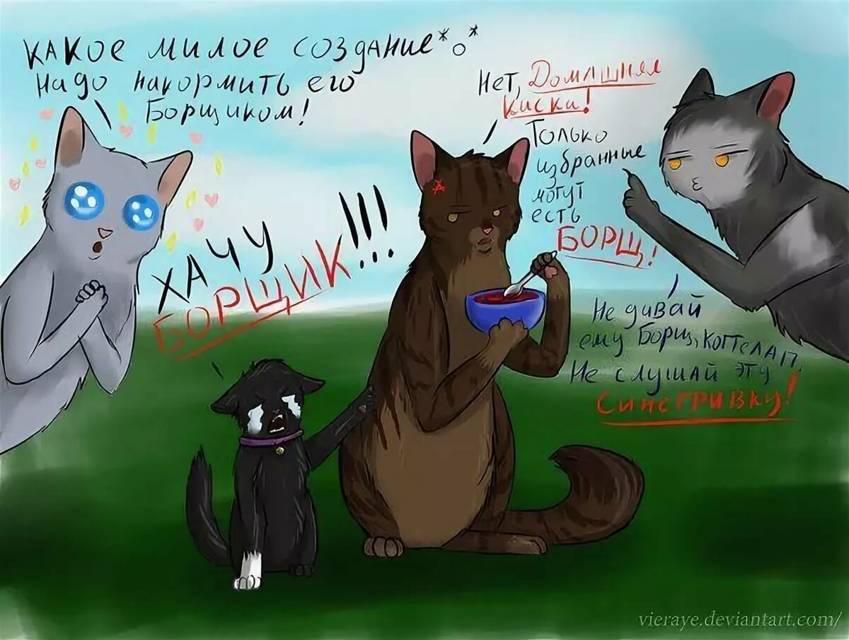 картинки коты воители смешные картинки она фитнес-тренер даже