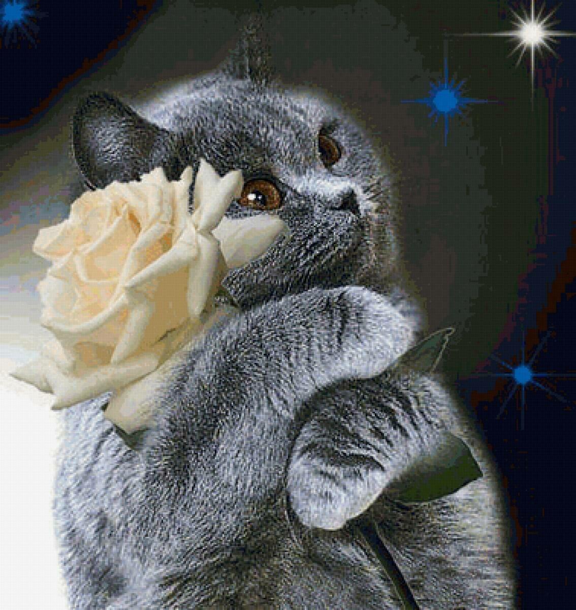 Красивая открытка обнимашки