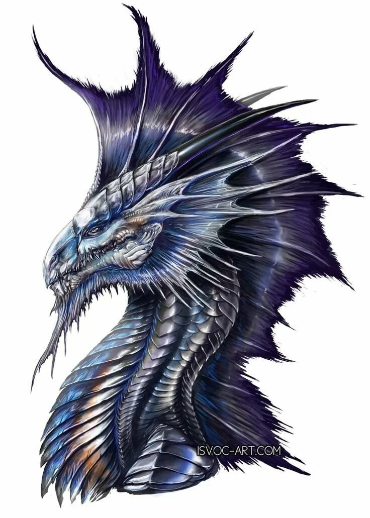 Король дракон картинки