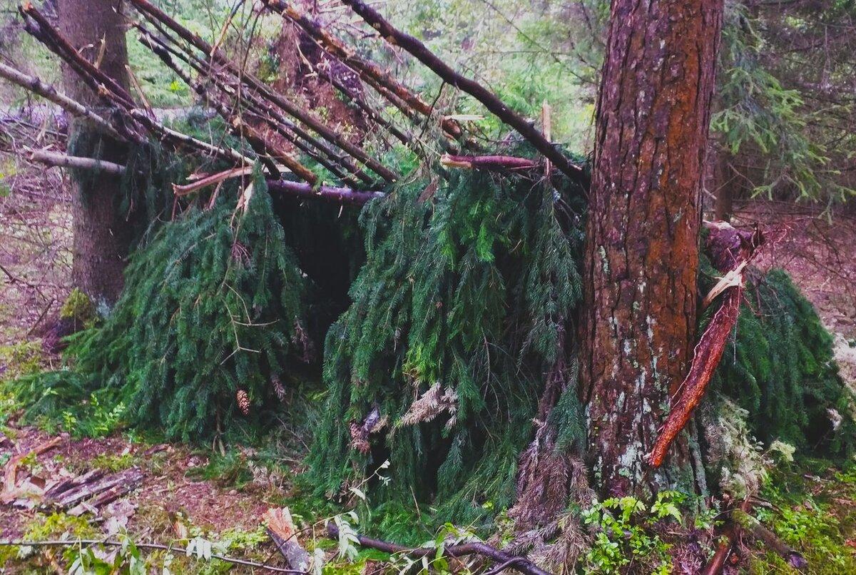 лист лесные шалаши фото масленников посвятил танцам
