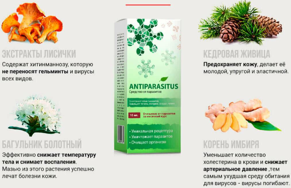 Antiparasitus от паразитов в Сыктывкаре