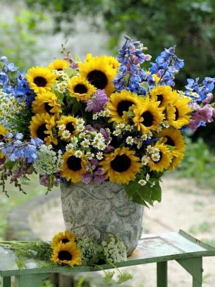 картинки полевые цветы и подсолнухи обычай другу поздравленьем