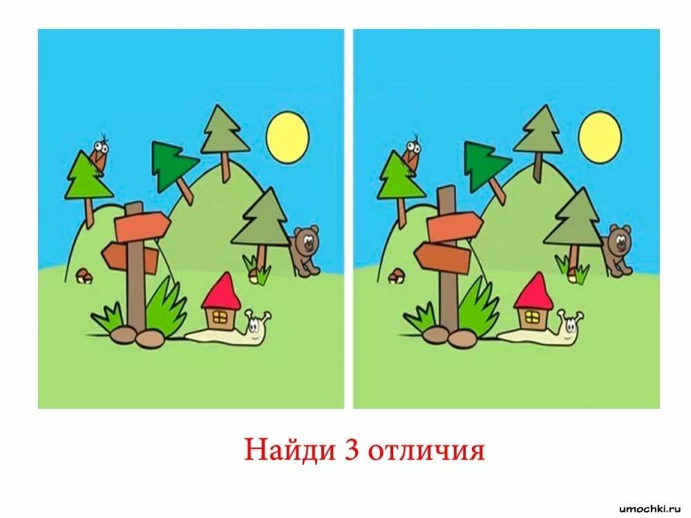 Картинки найди лишнее сад