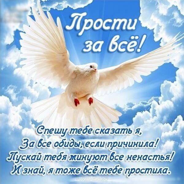 Смешные, картинки о прощенном воскресении друзьям короткие