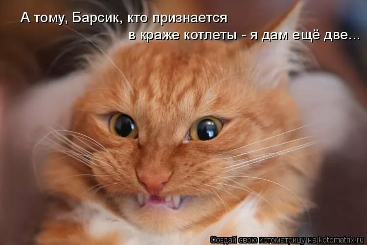 Как я вам рад смешные картинки, открытки картинки настроение