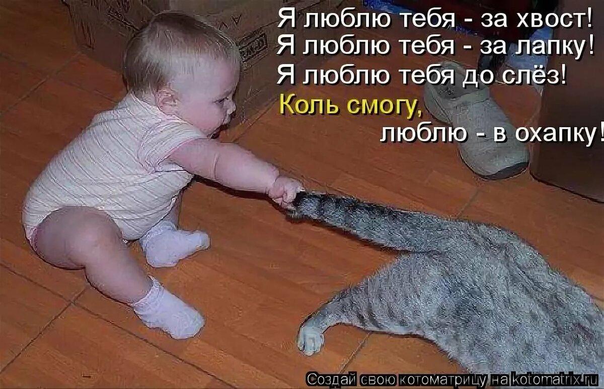 смешные картинки я люблю тебя до слез тех