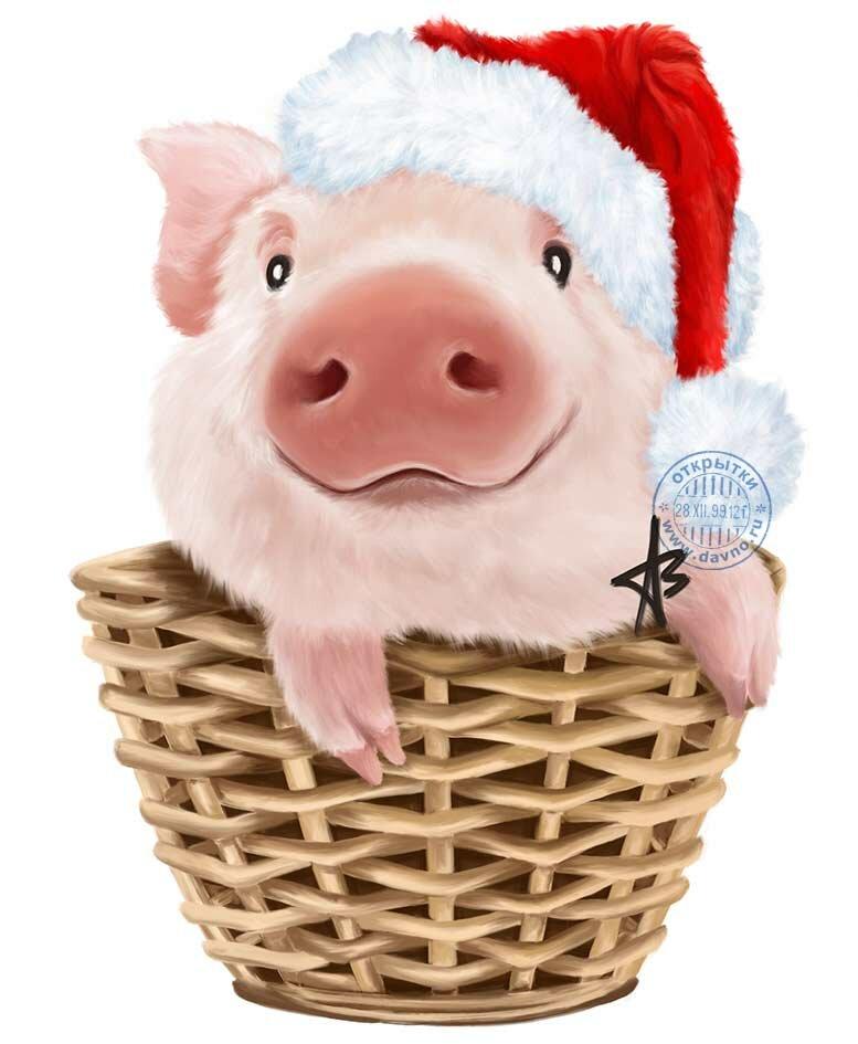 процессе картинка новогоднего символа свиньи да
